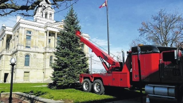 Christmas tree donated for Fayette County Courthouse lawn