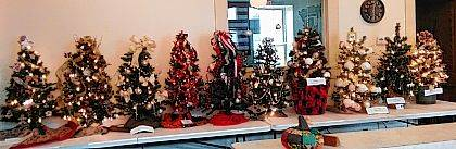 The 2017 West Liberty Christmas Tree Silent Auction is underway with 10 decorated 3-foot Christmas trees displayed at Town Hall. The event is sponsored by The West Liberty Business Association with proceeds going to the West Liberty Historical Society Opera House Renovation Project. Bidding stops Nov. 24 at 5:30 p.m. The winner will be called and asked to retrieve the tree Nov. 27 or 28. The trees were decorated by Theresa's Gingerbread House III, Bobbi Gratz and Cindee Boyd, the McIntosh Family, Project Teddy Bear & Friends Non-Profit, West Liberty Historical Society, Adriel Foster Care & Adoption & Family Preservation, Peoples Savings & Loan, Wygal Family, MCC Thrift, and the Barger Family.