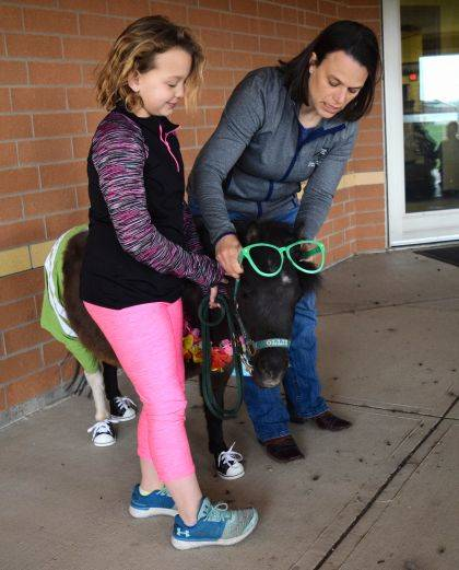 Ollie's owner, Jolene Buchenroth, slips on his sunglasses with help from second grader Lilly Strauser.