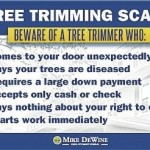 Tree-trimming scams on rise in Ohio