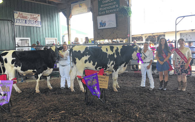 Grace Butcher (left) won Grand Champion Market Dairy Steer Showman and Reserve Champion Market Dairy Steer. Kaylin Butcher (right) won Reserve Champion Dairy Steer Showman and Grand Champion Market Dairy Steer. Also pictured are the 2018 Meigs County Fair Queen, Mattison Finlaw, and 2018 First Runner-Up, Raeven Reedy.