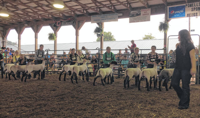 Participants take part in the Showman of Showman competition at the 2018 Meigs County Fair.