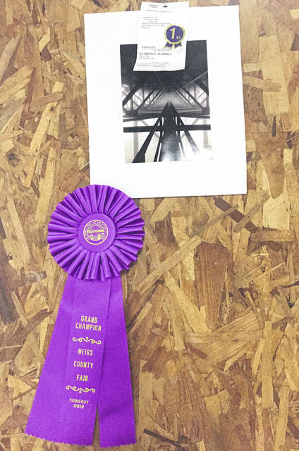 The Grand Champion photograph was by Patricia Aldridge of Reedsville with her Abstract Fine Art entry.