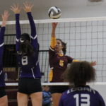 Lady Marauders fall to Logan