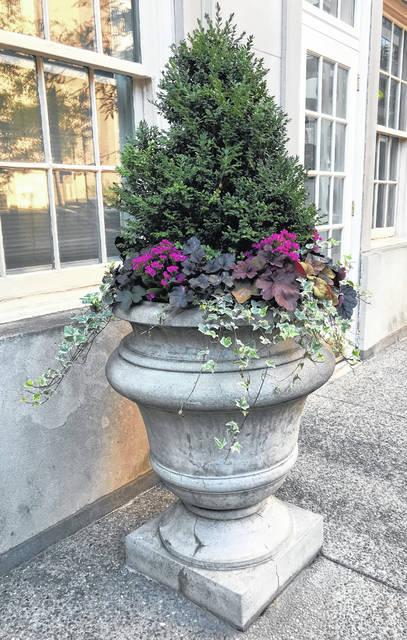This handsome planter, on Philadelphia's Rittenhouse Square, features a boxwood shrub surrounded by perennial coral bells, variegated ivy and tropical kalanchoe.