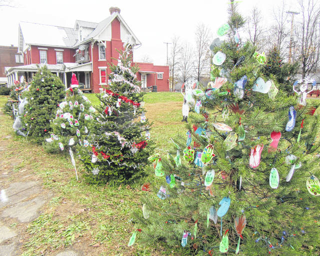 Christmas trees will soon be on display around the area, similar to these which were in Middleport in 2018.