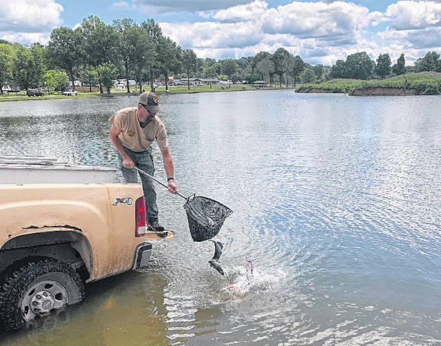 Fish were stocked at Krodel Park on Thursday before the Fishing Rodeo.