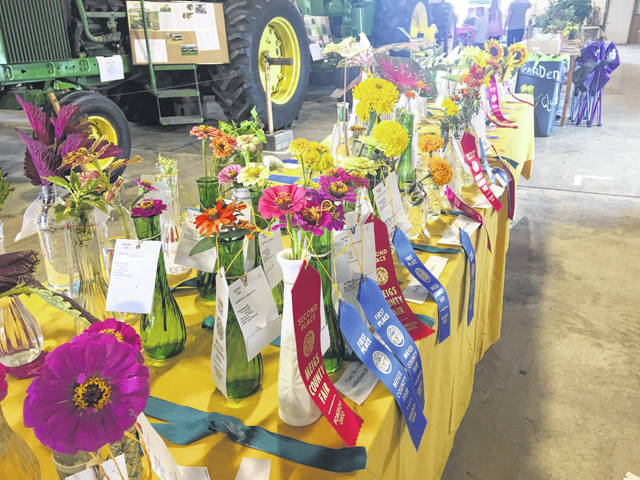 Two flower shows will be part of the 2020 Meigs County Fair.