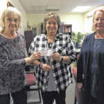 Chester Garden Club disbands with last donation