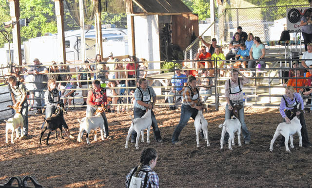 Showman of Showmen contestants take part in the competition at the 2019 Meigs County Fair.