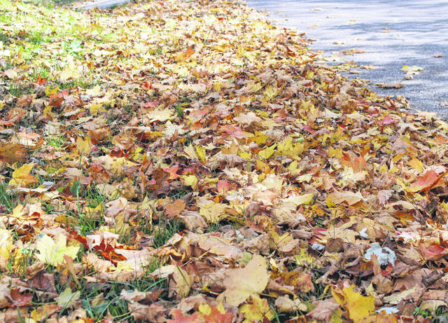 Fall colors have begun to appear on the trees around the area, bringing leaves of yellow, orange, red and other colors. Leaves will continue to change colors and fall in the coming weeks as the fall colors peak. Fall colors are expected to explode across most of the state this coming weekend, according to the Ohio Department of Natural Resources (ODNR). Ohioans and out-of-state visitors are encouraged to explore a state park, nature preserve, wildlife area or forest this October to enjoy the many free amenities that they offer, as well as the fall color Ohio provides.