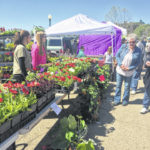 Meigs Farmers' Market opens for the season