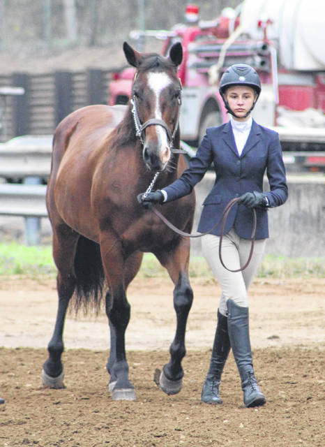 Maddee Bolden walks her horse into the arena for the Meigs County Junior Fair Showmanship competition on Monday morning.