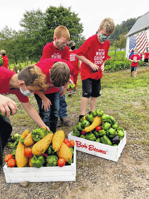 As part of the Bob Evans Garden Project, students from Vinton Elementary harvest food from a community garden in front of the iconic white barn on the original Bob Evans Farm in Rio Grande, Ohio.