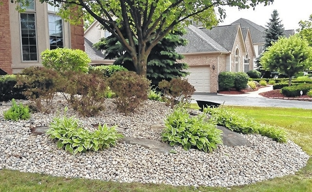 Is Stone Mulch Better Than Wood Mulch Community Common