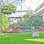 A Winter Visit to Longwood Gardens