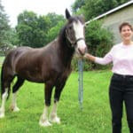 For the love of horses: Woman overcame polio as child by horseback riding therapy