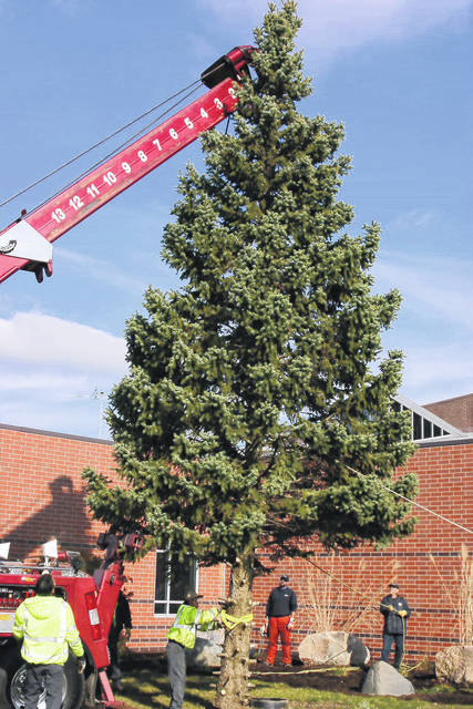 The City of Vandalia is seeking a tree donation for its annual Christmas Tree.