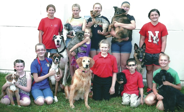 The 4H group A Bunch of Hair at the 2015 Ohio State Junior Fair Dog Show with their canines. All club members placed at the fair with six members recognized as Ohio State Champions.