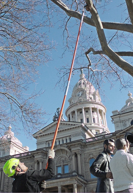 Anthony Weber | Troy Daily News Workers from Tree Care Inc., including David Meurer work to care for lite pruning on several ornamental trees around the Miami County Courthouse Saturday in Troy.