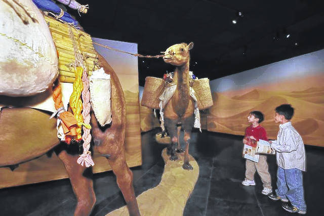 """Provided photo A trio of caravan camels wending their way through the desert can be found in the """"Traveling the Silk Road: Ancient Pathway to the Modern World,"""" new to COSI."""