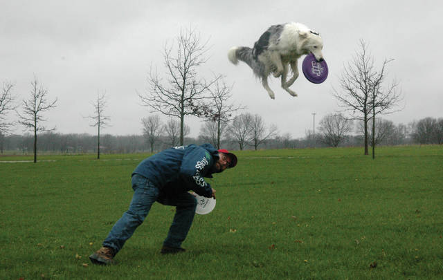 "Cody Willoughby | Troy Daily News Competing canine Mambo No. 5 leaps over trainer Matt Bilderback, president of the Southern Ohio Flying K-9s, to catch an evasive Frisbee during the annual ""Spring Fling"" dog social at Lost Creek Reserve in Troy. The event was hosted by the Miami County Park District. The Southern Ohio Flying K-9s, who hail from the greater Columbus area, were featured as special guests, and showcased numerous dogs leaping for Frisbees, both in freestyle and league play. The group will next compete in Chompapalooza in Dublin, Ohio on Saturday, May 12. For more information on park events, visit www.miamicountyparks.com."