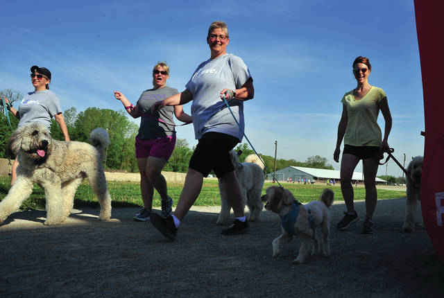 Mike Ullery | AIM Media Midwest Tricia Fellers with her dog Calvin, Nicole Bailey with Arleigh, Angela Dilts with Lewie, and LaDonna Mays with Lucy participate in Saturday's 5K-9 run at the Miami County Fairgrounds. The event, hosted by Miami East and Milton-Union FFA donates proceeds to the Miami County Animal Shelter. This year's event saw 83 runners, many with their dogs, raise more than $500 for the animal shelter.