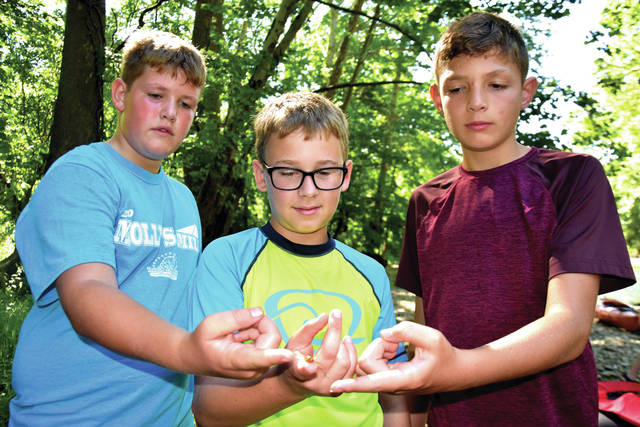 Cody Willoughby | Troy Daily News Ryan Woods, 13, of Pleasant Hill, Parker Crow, 11, of Laura, and Liam Woods, 12, of Pleasant Hill study a live dragonfly nymph found while water seining during the Stillwater River Float on Thursday at Brukner Nature Center.