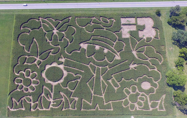 The annual corn maze is ready for visitors at the Miami County Park District Lost Creek Reserve. The maze, sponsored by the Miami County Farm Bureau, will be open to the public during the park's Fall Farm Festival on October 15. The maze is available for use by private groups by calling the Park District Office at 937-335-6273.