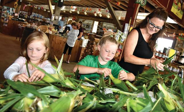 Cody Willoughby | Troy Daily News Josie, 6, Evie, 8, and Faye Sommer of Tipp City sift through the bi-color corn stock at Fulton Farms, ahead of the Sweet Corn Festival set for Saturday, Aug. 25, and Sunday, Aug. 26.