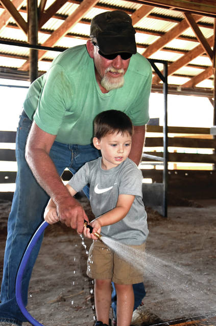 Cody Willoughby | Troy Daily News Ethan Elsass, 3, assists grandfather Mike Elsass of New Carlisle in prepping pens for dairy feeders on Thursday at the Miami County Fairgrounds.