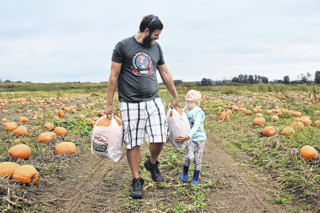 Cody Willoughby | Troy Daily News Kyle Winning and daughter Sophia, 4, of Riverside, traverse the pumpkin patch after choosing their pumpkins during a visit with 150 students from Mad River Elementary School to Fulton Farms on Thursday. The Fulton Farms pumpkin patch is open to the public for picking through Wednesday, Oct. 31.