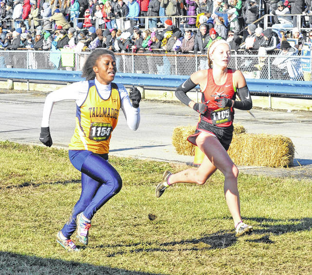 Josh Brown|Troy Daily News Tippecanoe's Katie Taylor and Tallmadge's Ravyn Edge race to the finish line during the Division II state cross country meet Saturday at National Trail Raceway.