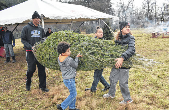 Cody Willoughby | AIM Media Midwest Donald Alexander, of Sidney, receives assistance from Kai Alexander, 5, and Timothy and Kiara Hudgins, 10 and 12, in carrying a freshly-netted Christmas tree back to the truck on Saturday at Fulton Farms. The Christmas tree patch is open for patrons to choose their own trees through Thursday, Dec. 22. Complimentary horse-drawn hayrides will be offered on site on select dates. For more information, visit www.fultonfarms.com.
