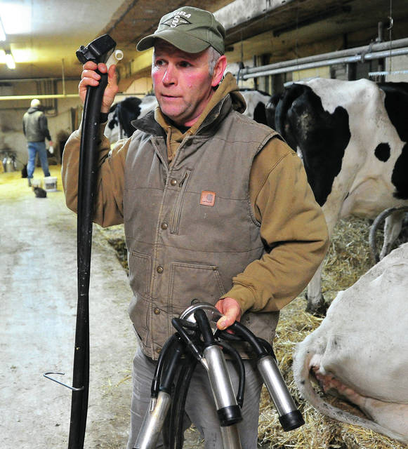 Third-generation Brown Township dairy farmer Jeff Knoop goes about milking his herd recently