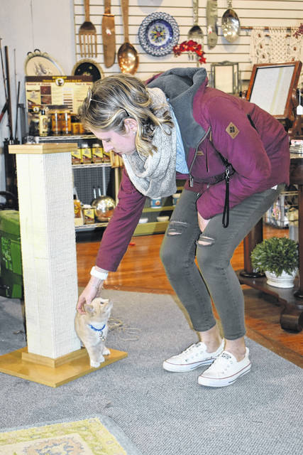 Elle Ceiss, of Piqua, greets Brooks the shopkeeping cat at the 3 Weird Sisters Studio on Friday.