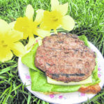 Gloria beefs up springtime meal