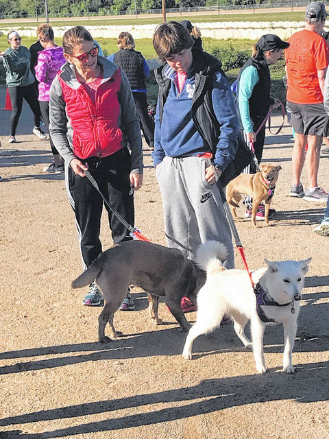 Melody Vallieu | Miami Valley Today The Miami County Park District will hold its monthly dog social from 1-3 p.m. Charleston Falls Preserve, 2535 Ross Road, south of Tipp City.