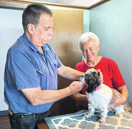 Dr. English examines patient, Ellie, while owner Lolita Schultz, of Pleasant Hill, holds her. English will retire on July 30, after which the English Veterinary Services business will be known as Dr. Jo's Pet Wellness and Acupuncture, with care provided by Johnna Smith, DVM, CVA.