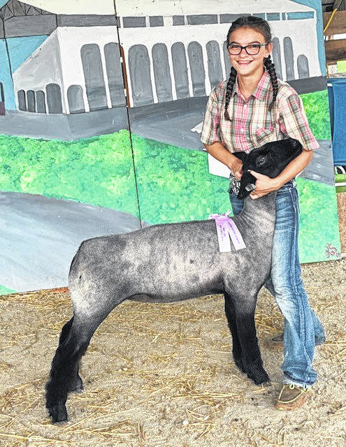 Addison Fine, 12, daughter of Bryan and Jodi Fine, of Covington, won Reserve Division I Junior Show. Addison is a member of the Elizabeth Livestock 4-H Club.