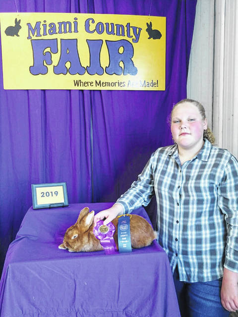 Provided photo Kylee Clemens, 14, of Troy, won the 2019 Miami County Fair first place, Best of Breed, and Best of Opposite Sex with her senior buck Thrianta rabbit. Clemens also won first place with her senior buck black New Zealand rabbit (not pictured) and first place with her senior doe black broken New Zealand rabbit (not pictured). Clemens is a member of the Rockin' Rabbits 4-H Club. Clemens is the daughter of Amie and Shawn Bartley and David Clemens.