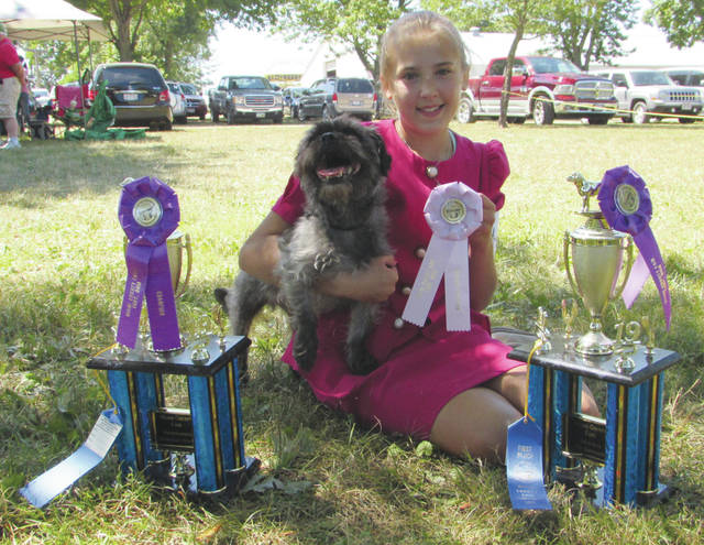 Payten Nitschke, 12, of Piqua, won the 2019 Miami County Fair first place Showmanship Intermediate B, first place Showman of Showmen, and second place Obedience Novice A awards. Nitschke is a member of A Bunch of Hair 4-H Club. She is the daughter of Kindra Nitschke.