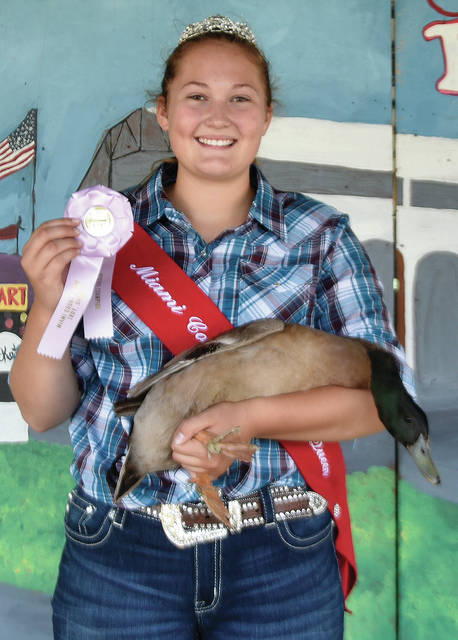 Bethany Weldy, 16, from Covington, of Ears to Tails 4-H Club won Reserve Champion Fancy Duck.