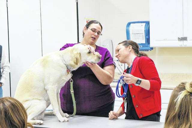 Provided photo Elizabeth Bingham, assistant professor of Veterinary Technology, provides a hands-on demonstration to Kelty Inman, a guidance counselor at Upper Valley Career Center during a breakout session at Edison State's Counselor Conference on Nov. 13 at the Piqua campus.