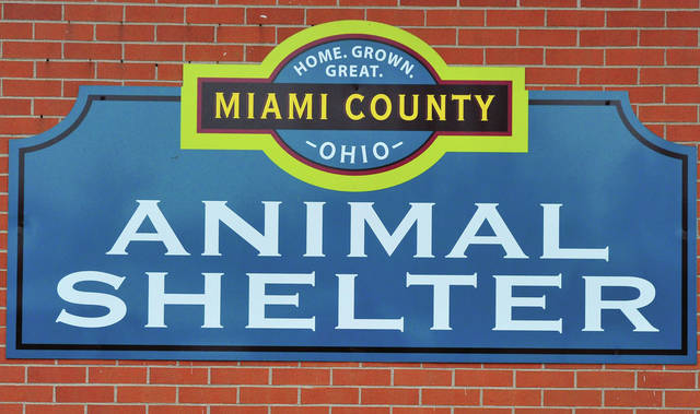 For more information on adoption a pet from the Miami County Animal Shelter visit their website at www.co.miami.oh.us/110/Animal-Shelter