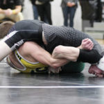 Area wrestling teams compete at sectionals; Troy's Kraynek competes at state gymnastics: Saturday sports roundup