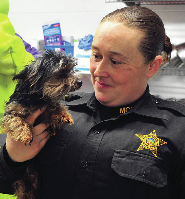 Deputy Sarah Fraley holds one of more than 20 dogs that were acquired late last week by the Miami County Animal Shelter. Fraley said that the animals were all well-cared for but had become too much for the owner to handle so she gave all but four of her dogs to the shelter for adoption. The shelter is accepting applications for adoption of the animals. Fraley emphasized the applicants are being screened for suitability and it is not a first-come, first-served, process.