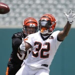 Mike Brown says Bengals might finally honor their past