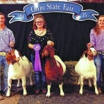 Local 4-Hers excel at state fair