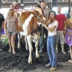Dairy reserve champ nets $700